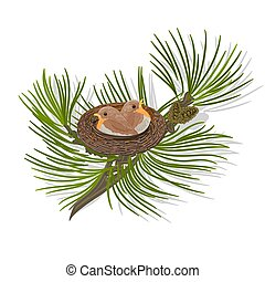 Chickadee Birds in the nest on a pine branch vector...