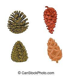 Four pine cones larch cones vector illustration
