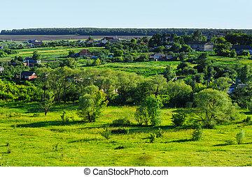 beauty green summer rural landscape