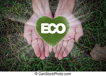 Eco word with grass heart in hands - Eco word with grass...