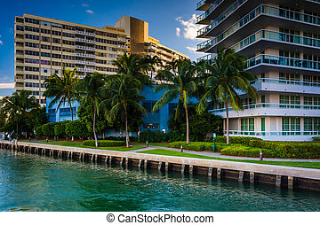 Palm trees and buildings on Belle Isle, in Miami Beach, Florida.