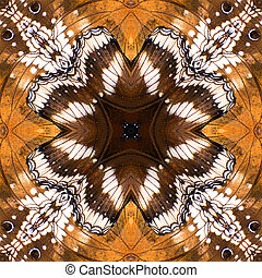 Butterfly wing - Butterfly, Beautiful seamless pattern made...