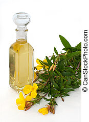 Evening primrose oil with blossoms - Bottle of oil with...
