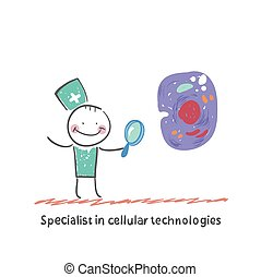 Specialist in cellular technologies is looking through a...