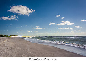 The beach in Sanibel, Florida.