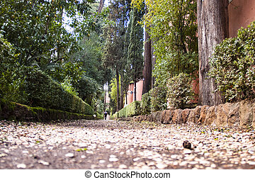 Non-Catholic Cemetery - the Non-Catholic Cemetery in Rome.It...