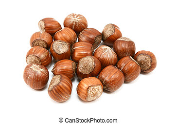 Hazelnuts in shells, isolated on a white background