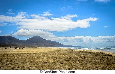 Cofete, sandstrand, in, Fuerteventura, kanarienvogel,...