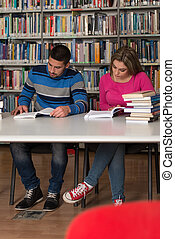 Two College Students In Library Reading Books - Portrait Of...