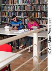 People Studying In A Library - Portrait Of Clever Students...