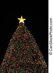 christmas tree with the star 1