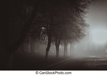 Horror scene of a autumn fog. LIGHTING FILM NOIR STYLE -...