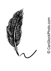 hand draw sketch of feather, isolated on w