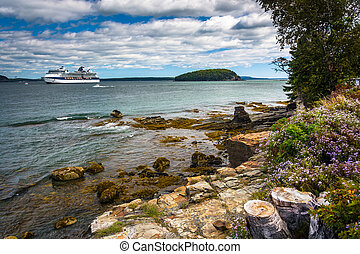 Rocky coast and view of cruise ship and island in Frenchman...