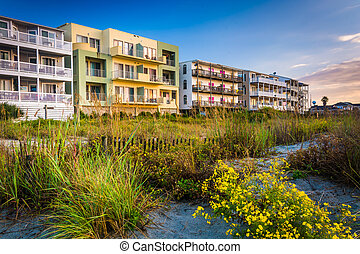 Flowers and beachfront buildings in Folly Beach, South...