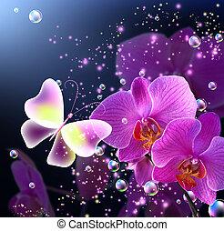 borboleta, com, orquídeas, e, Bolhas,