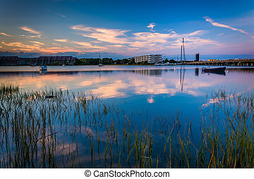 Marsh grasses at twilight on the Folly River, in Folly...