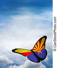 Arizona flag butterfly flying on sky background