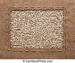 Frame made of burlap with the line lies on sunflower seeds,...