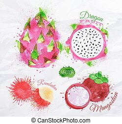 Exotic fruit watercolor dragon fruit, rambutan, mangosteen -...