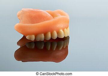 反映, 牙齒