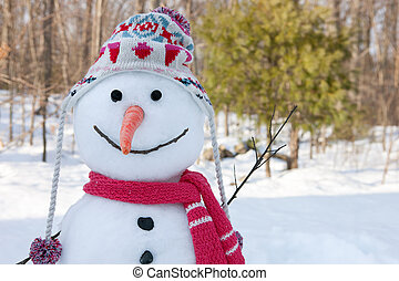 Snowman in a hat and a scarf