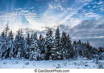 cloudscape and winter scene - winter scene with beautiful...