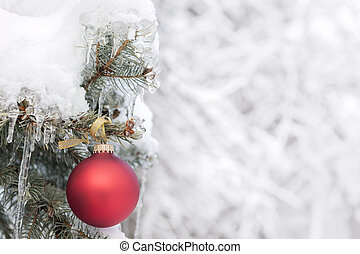 Red Christmas ornament on outdoor tree - Red Christmas...