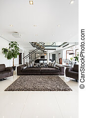 Modern and spacious drawing room - Interior of modern and...