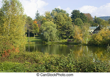 New England Pond - Trees surrounding a beautiful pond in New...