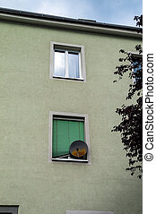 satellite dish on house facade