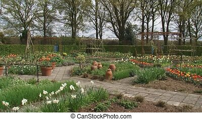 Flower bulbs and terracotta containers in kitchen garden +...