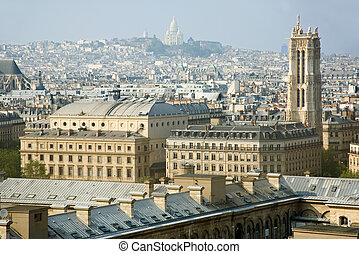 Bird-view of Paris from the Notre-Dame de Paris...