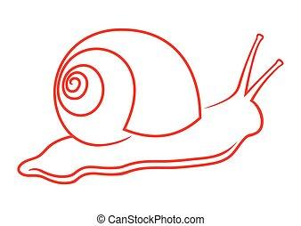 snail, ,