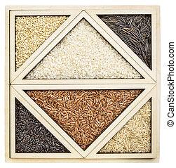 arroz, abstratos, em, tangram, bandeja,