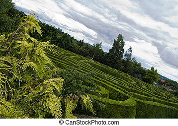 Celtic maze in Wicklow, Ireland - Panoramic view of a Celtic...