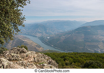 Douro Valley - Tall Douro Wine Country's Heritage