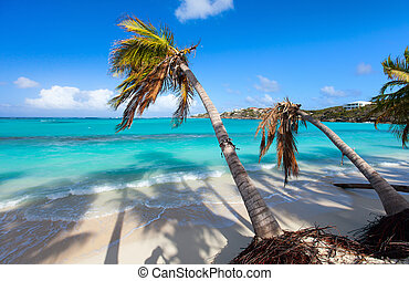 Shoal Bay East - Beautiful beach framed with palms on...