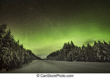 The amazing Northern Lights Aurora Borealis - The amazing...
