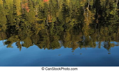 Northern reflections. - Trees reflected in the lake. Autumn...
