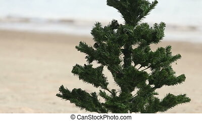 New Year tree with a Christmas hat on seacoast with the...