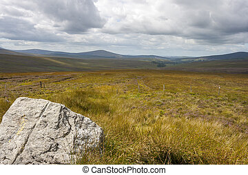Wicklow landscape - Yellow grassland Wicklow mountains...