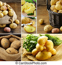 collage of fresh organic potatoes in bags and baskets,...