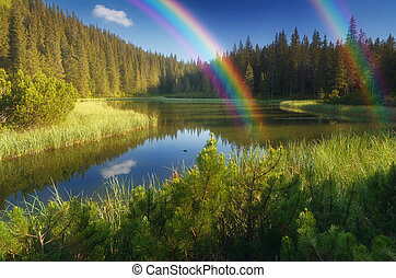 Lake in a mountain forest - Landscape with beautiful lake in...