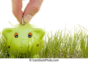 saving money on a piggy-bank on the grass isolated on a...
