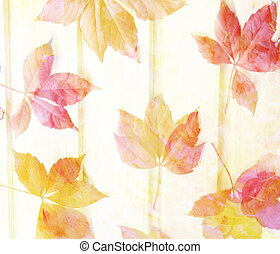 Scenic abstract background with leaves made with color filters,