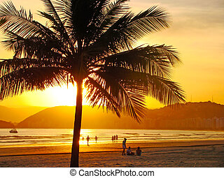 beautiful golden sunset on the beach of the city of santos...