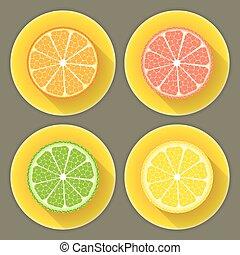 Citrus fruit icons set