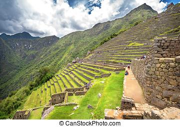 inca, ciudad, machu, Picchu, (Peru), ,