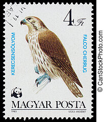 "Stamp printed in Hungary shows ""Bird of prey"" - HUNGARY -..."